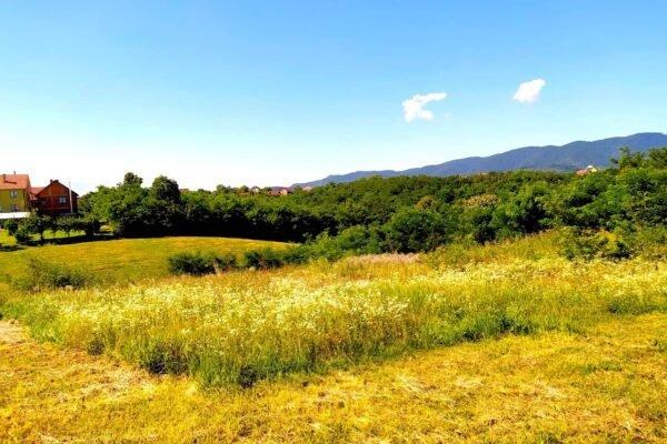 земельный участок в Лознице